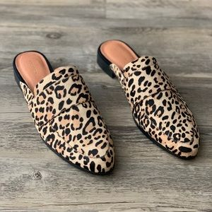 Halogen 'Violet' Calf Hair Leopard Loafer Mule